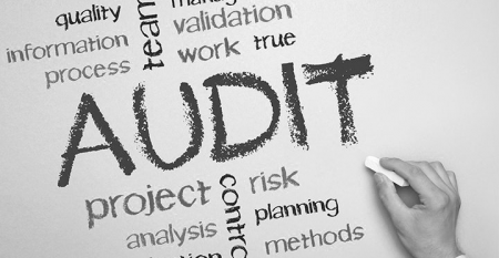 audit _interno
